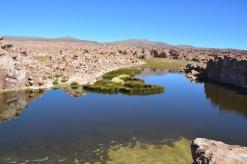Lagune Catal (5)
