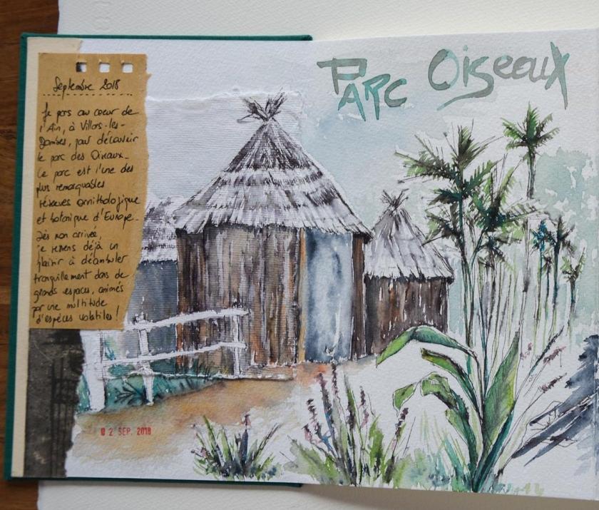 Carnet_Parc Oiseaux (15)