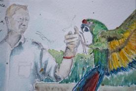 Carnet_Parc Oiseaux (18)