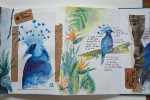 Carnet_Parc Oiseaux (3)