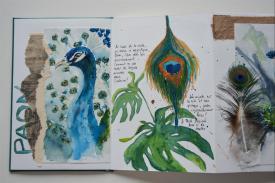 Carnet_Parc Oiseaux (8)